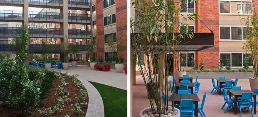university-gateway_0000_courtyard-jpg