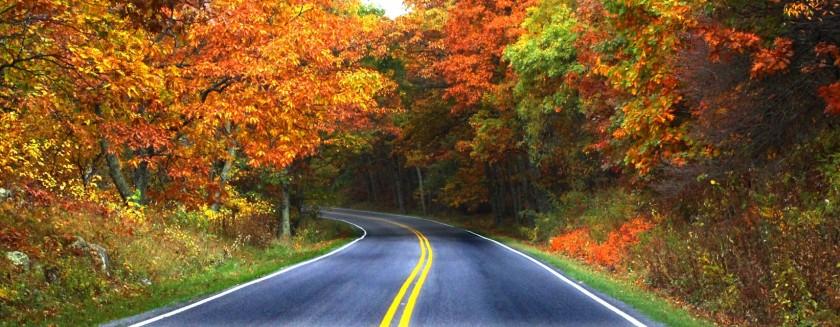 Shenandoah.National.Park.640.29979